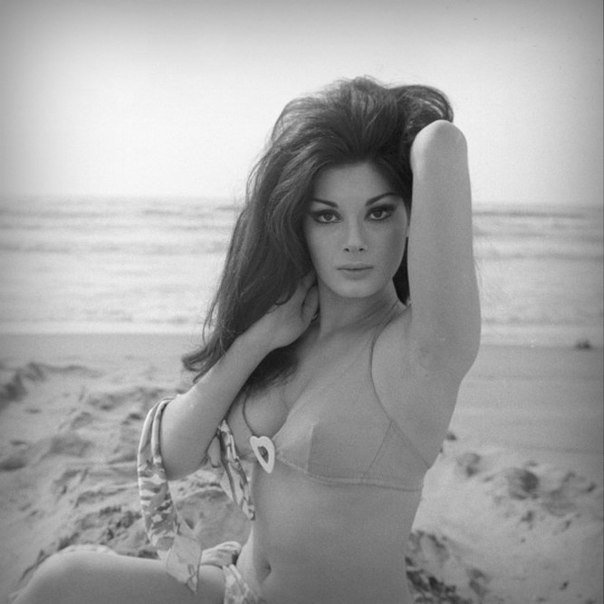 Edwige Fenech – The Giallo Hottie